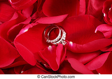 Macro shot of set of wedding rings in red rose petals