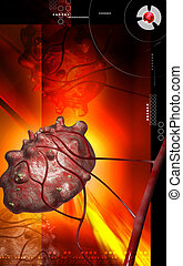cyst - Digital illustration of cyst in colour background...