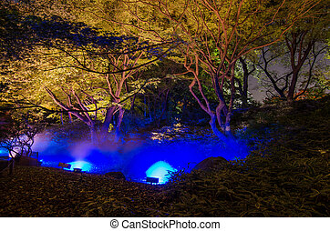 Seasonal illuminations at Rikugien Garden - Seasonal...