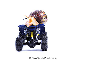 Bye bye 2 - A snail riding a toy quad model looking back and...