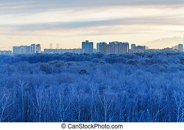 cold dawn over blue frozen city park in winter