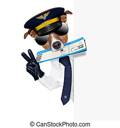 check in dog - check in pilot dog with boarding pass beside...
