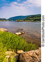 Rocks and grasses along the Potomac River, near Harpers...
