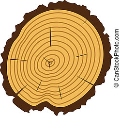 vector wooden cut of a tree log with concentric rings and...