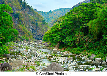 Cordillera mountains river - Lanscape with a river in...