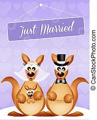 Wedding of kangaroos - illustration of Wedding of kangaroos