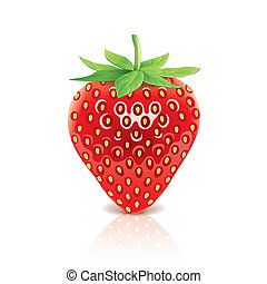 Strawberry isolated on white vector - Strawberry isolated on...