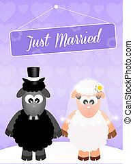 Wedding of sheeps - illustration of Wedding of sheeps