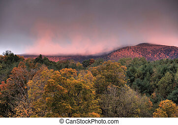 Sunrise over autumn mountains - Tree covered hills in...