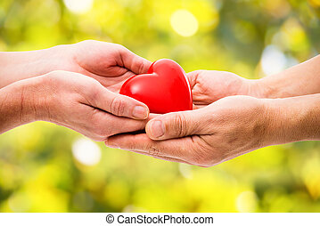 Red heart in human hands on green background