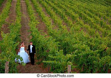 葡萄園,  newlyweds