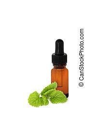 Lemon Balm Herb Essential Oil