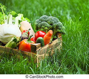 Fresh vegetables in the box on the green grass