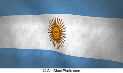 Argentina Flag Background Textured Loop-able