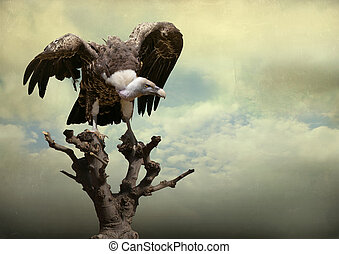 Eagle - Beautiful golden eagle on a tree with opened wings...