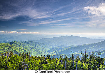 View From Clingman's Dome - View from Clingman's Dome in the...