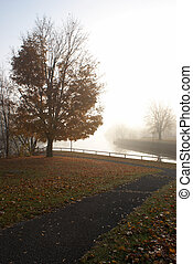 Backlit Pathway - A foggy morning scenery is backlit by the...