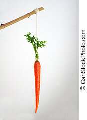 Carrot on a stick incentive - Incentive, motivation concept