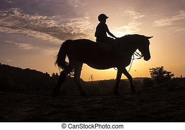 caballo, equitación, silueta