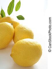 Lemon  - Fresh lemon on a white background