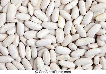 Great Northern Beans texture background. Also called white...