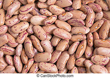 Cranberry Bean texture background Also called Borlotti Bean...