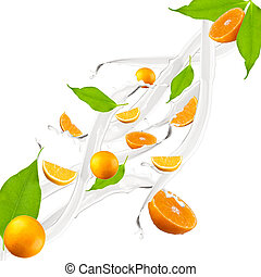 orange milk splash - Orange in milk splash, isolated on...