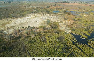 Okavango delta - Aerial view of okavango delta