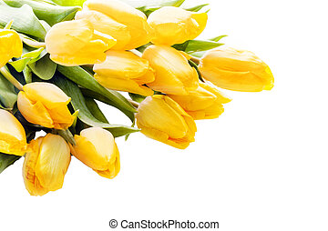 Bouquet of beautiful vivid yellow tulips lying diagonally...