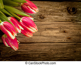Wood background with fresh red tulip decoration