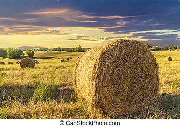 Bales of hay on a farm at sunset in Tuscany (Italy)