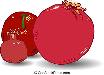 Pomegranates for Rosh Hashanah 1 - Vector illustration...