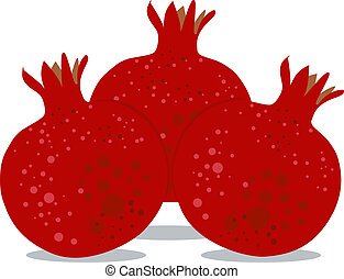 Pomegranates for Rosh Hashanah 2 - Vector illustration...