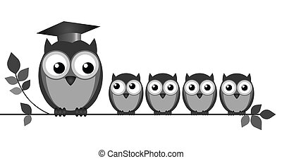 Owl Teacher - Owl teacher and pupils on branch isolated on...