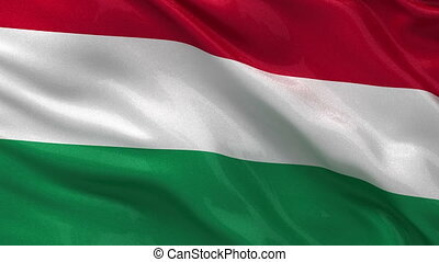 Flag of Hungary seamless loop - Flag of Hungary gently...