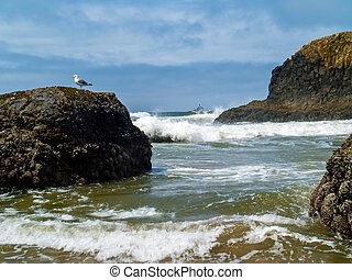 "Offshore lighthouse on the Oregon Coast nicknamed ""Terrible..."