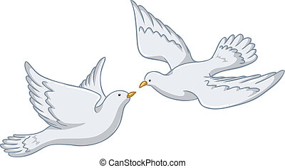 White Pigeons Flying Together - Vector illustration of two...