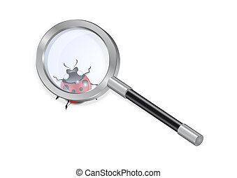 Magnifying glass and ladybird - Illustration of magnifying...