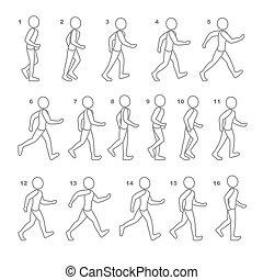 fases, paso, movimientos, hombre, ambulante, secuencia,...