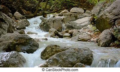 Affluent mountain. - Affluent mountain stream after a rain.