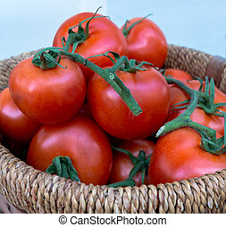 Basket of Tomatoes (1)