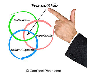 Fraud Risk