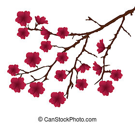 Blooming - vector blooming branch with red flowers