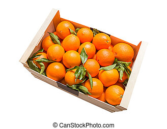 Wood box of valencian oranges on white background - Wooden...