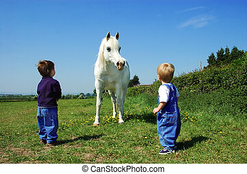 Children and a Horse - Two children meet a horse for the...