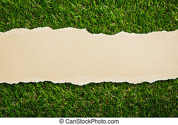 Ripped recycled paper on green grass background