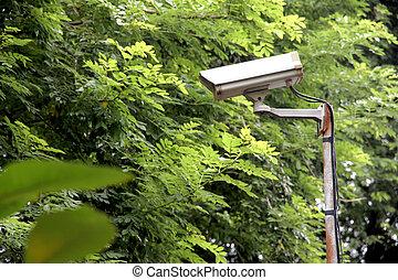 セキュリティー, カメラ,  CCTV, 公園
