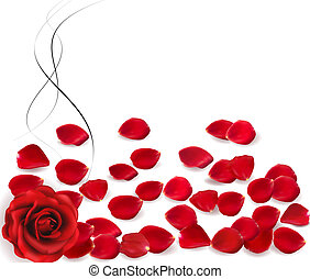Background with rose petals. Vector.