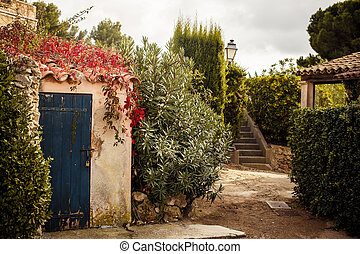 Yard in Saint Tropez - View of yard in Saint Tropez, French...