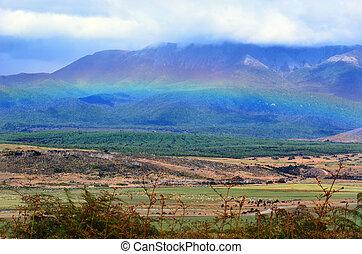 Fiordland - New Zealand - Rainbow above Fiordland, New...